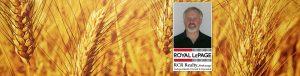 Robert Proteous, Sales Rep Royal LePage RCR Realty